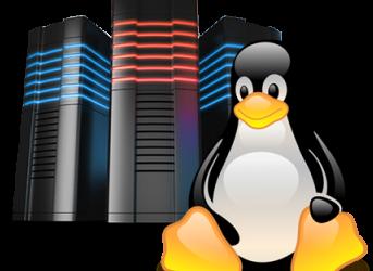 Linux Cloud Server Hosting